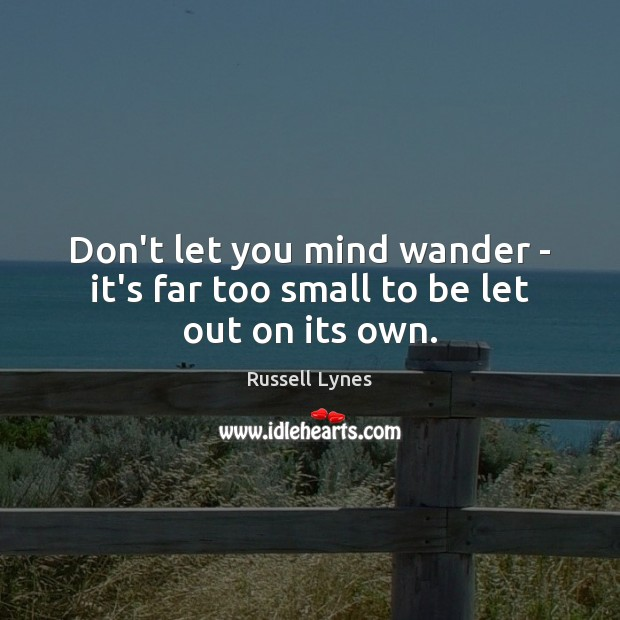 Image, Don't let you mind wander – it's far too small to be let out on its own.
