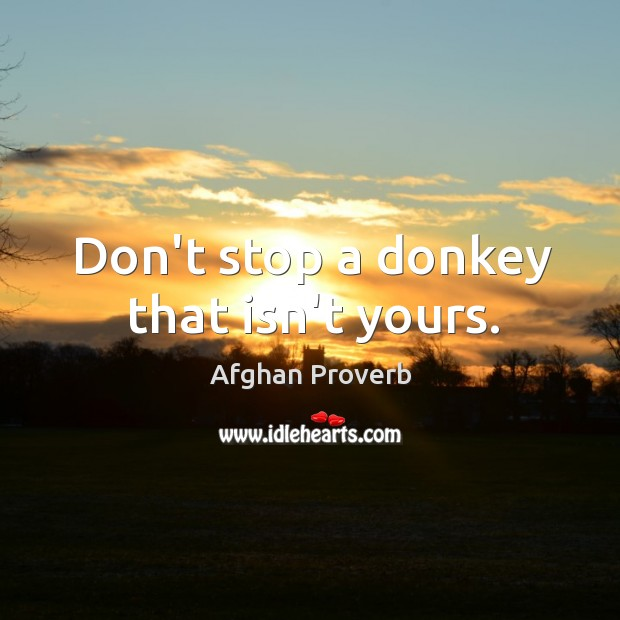 Don't stop a donkey that isn't yours. Afghan Proverbs Image