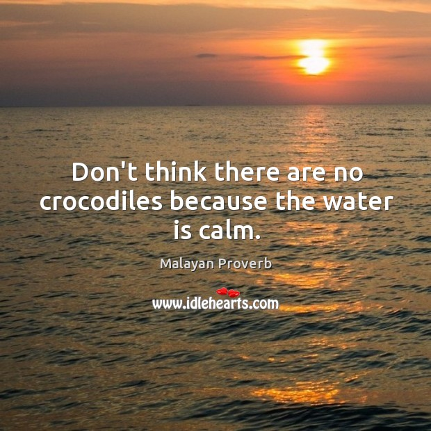 Image, Don't think there are no crocodiles because the water is calm.