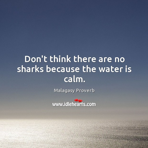 Don't think there are no sharks because the water is calm. Malagasy Proverbs Image