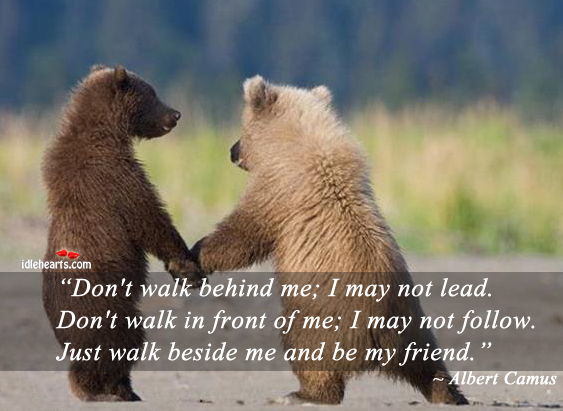 Don't walk behind me, I may not lead. Image
