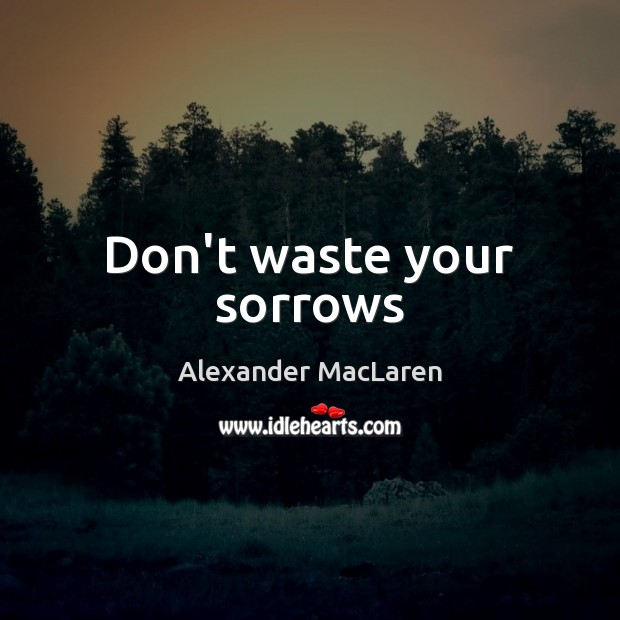 Don't waste your sorrows Alexander MacLaren Picture Quote