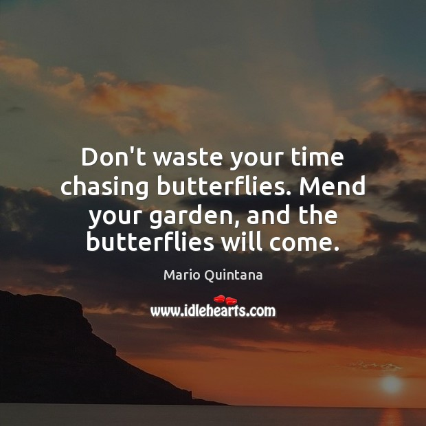 Dont Waste Your Time Chasing Butterflies Mend Your Garden And The