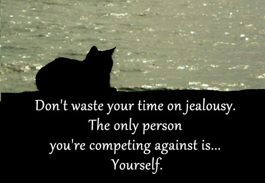 Image, Don't waste your time on jealousy.