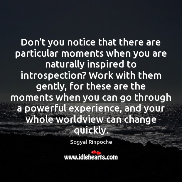 Don't you notice that there are particular moments when you are naturally Sogyal Rinpoche Picture Quote