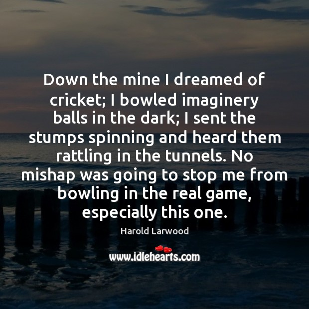 Down the mine I dreamed of cricket; I bowled imaginery balls in Image