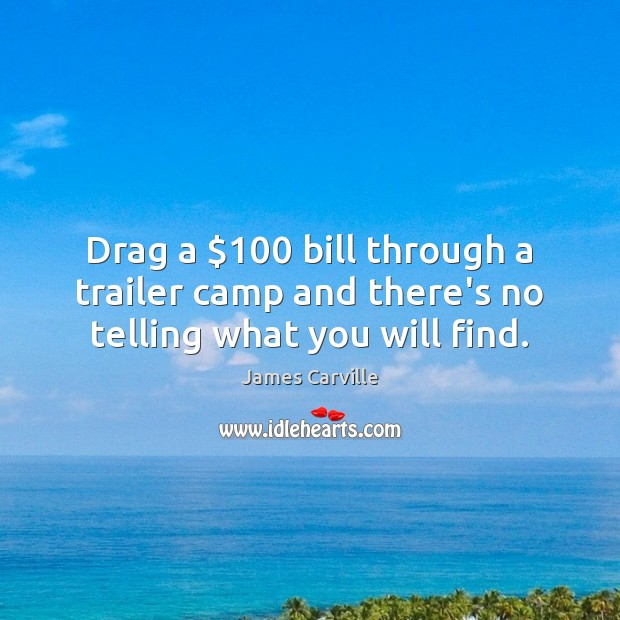 Drag a $100 bill through a trailer camp and there's no telling what you will find. James Carville Picture Quote
