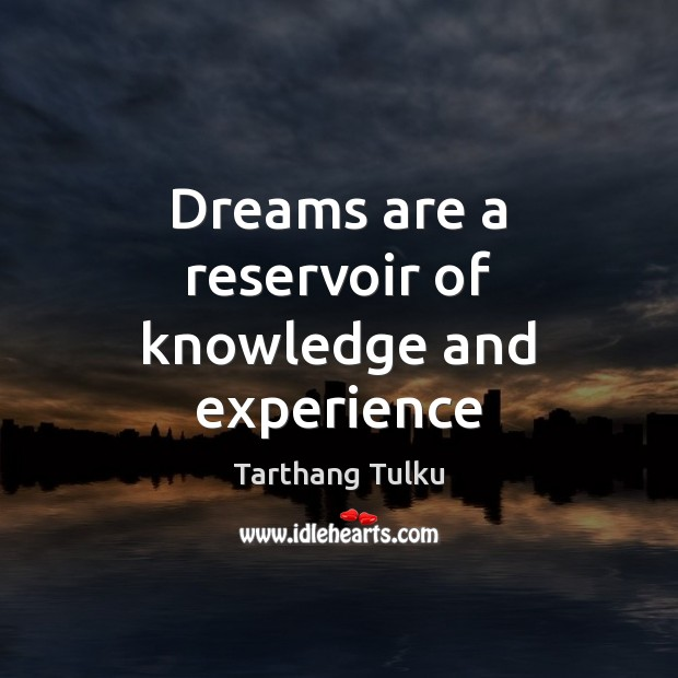 Dreams are a reservoir of knowledge and experience Image
