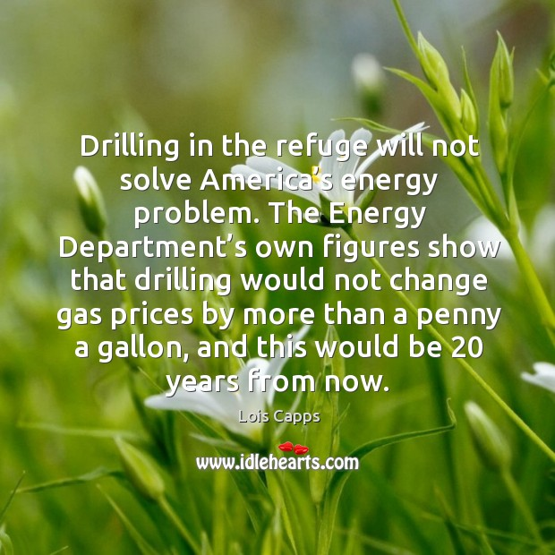 Drilling in the refuge will not solve america's energy problem. Image