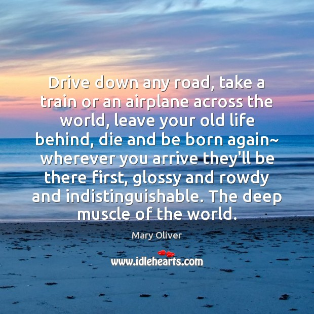 Drive down any road, take a train or an airplane across the Mary Oliver Picture Quote