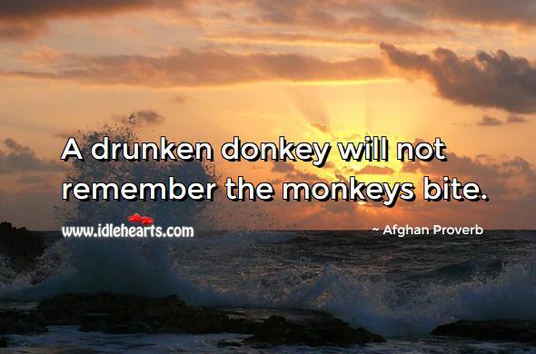 A Drunken Donkey Will Not Remember The Monkeys Bite.