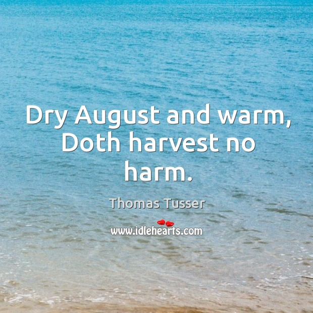 Dry August and warm, Doth harvest no harm. Thomas Tusser Picture Quote