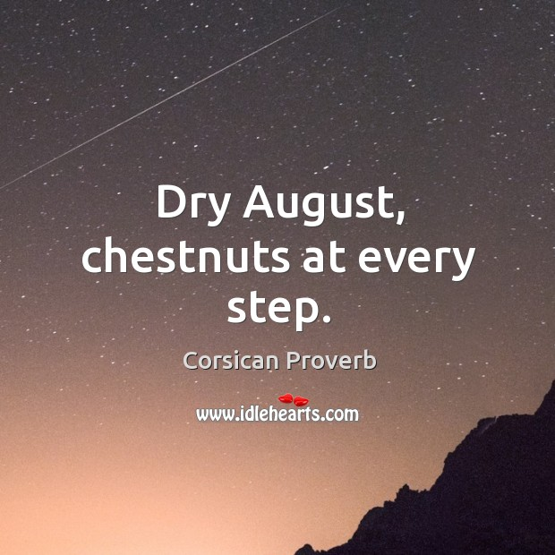 Image, Dry august, chestnuts at every step.