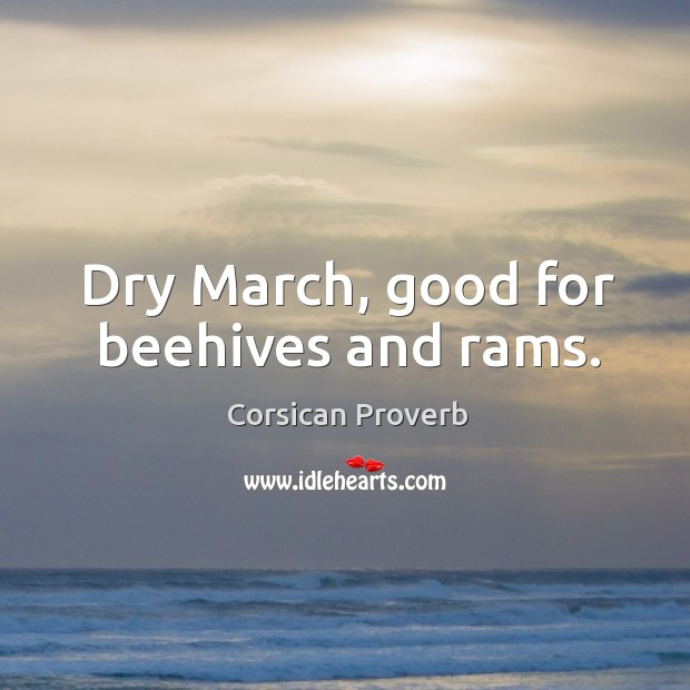 Dry march, good for beehives and rams. Image