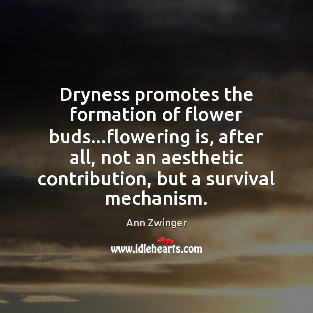 Image, Dryness promotes the formation of flower buds…flowering is, after all, not