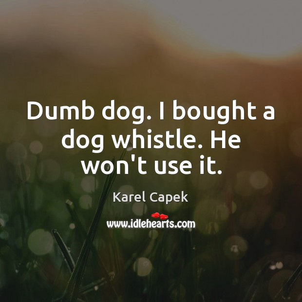 Dumb dog. I bought a dog whistle. He won't use it. Karel Capek Picture Quote