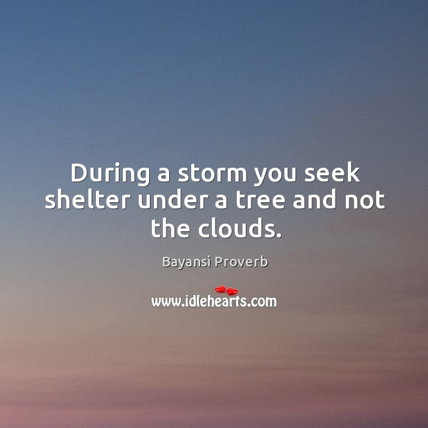 During a storm you seek shelter under a tree and not the clouds. Bayansi Proverbs Image