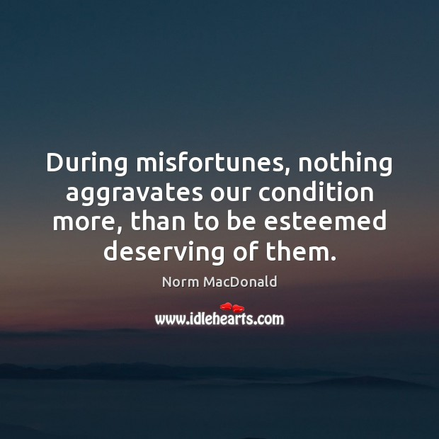 Image, During misfortunes, nothing aggravates our condition more, than to be esteemed deserving