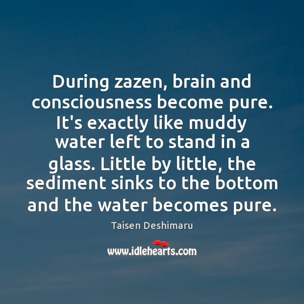 During zazen, brain and consciousness become pure. It's exactly like muddy water Image