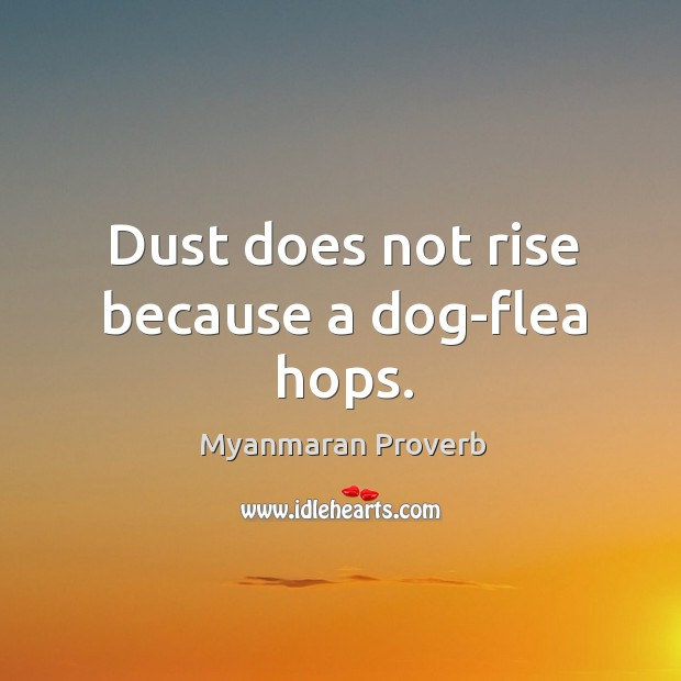 Dust does not rise because a dog-flea hops. Myanmaran Proverbs Image
