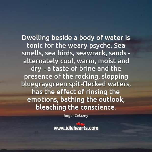 Dwelling beside a body of water is tonic for the weary psyche. Image