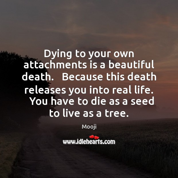 Image, Dying to your own attachments is a beautiful death.   Because this death