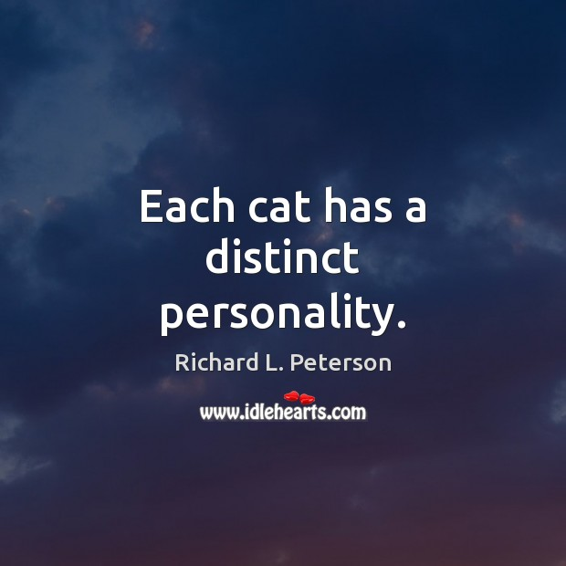 Each cat has a distinct personality. Image
