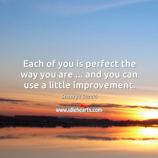 Each of you is perfect the way you are … and you can use a little improvement. Shunryu Suzuki Picture Quote