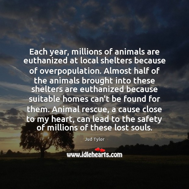 Image, Each year, millions of animals are euthanized at local shelters because of