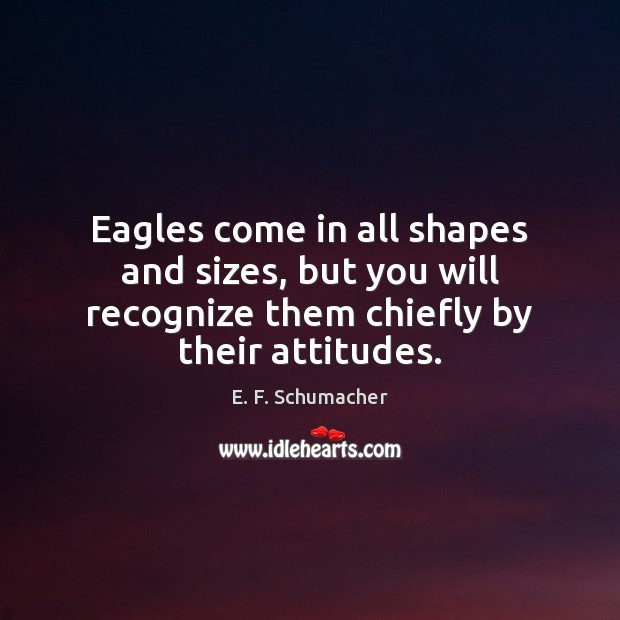 Image, Eagles come in all shapes and sizes, but you will recognize them