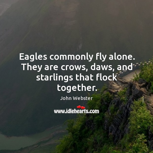 Eagles commonly fly alone. They are crows, daws, and starlings that flock together. Image