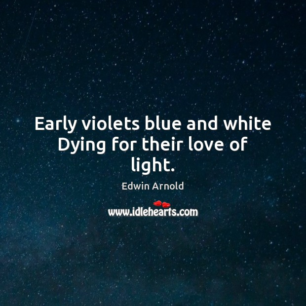 Early violets blue and white Dying for their love of light. Image