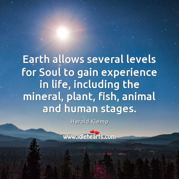 Image, Earth allows several levels for Soul to gain experience in life, including