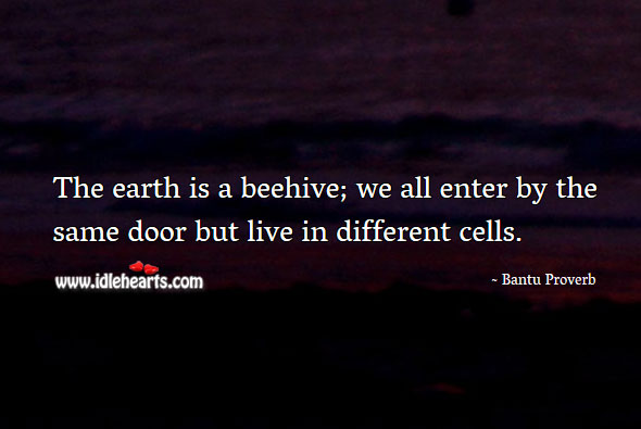 The earth is a beehive; we all enter by the same door but live in different cells. Bantu Proverbs Image