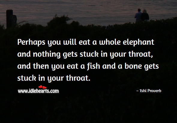 Perhaps you will eat a whole elephant and nothing gets stuck in your throat, and then you eat a fish and a bone gets stuck in your throat. Tshi Proverbs Image