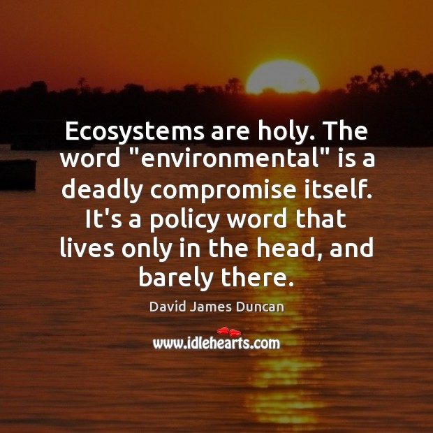 """Ecosystems are holy. The word """"environmental"""" is a deadly compromise itself. It's Image"""