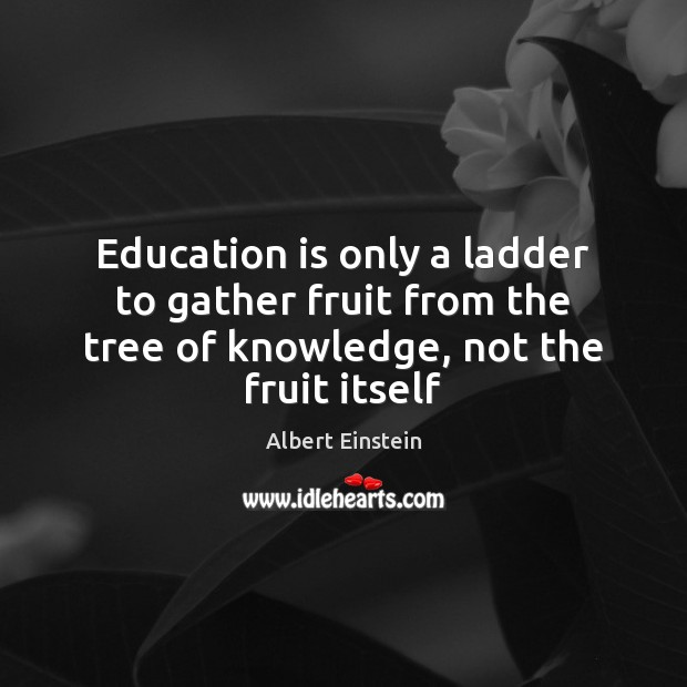 Image, Education is only a ladder to gather fruit from the tree of