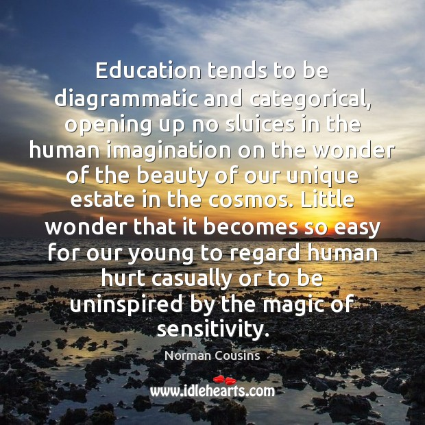 Education tends to be diagrammatic and categorical, opening up no sluices in Norman Cousins Picture Quote