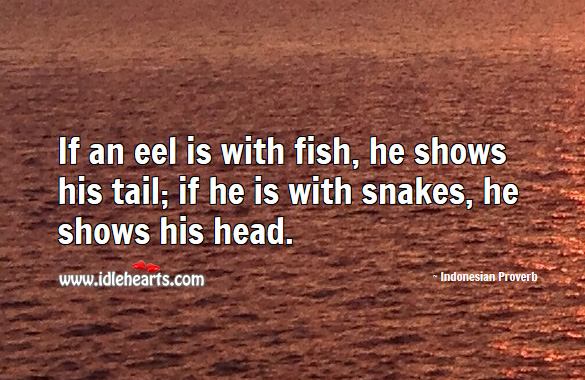 If an eel is with fish, he shows his tail; if he is with snakes, he shows his head. Indonesian Proverbs Image