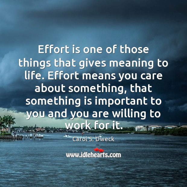 Effort is one of those things that gives meaning to life. Effort Image