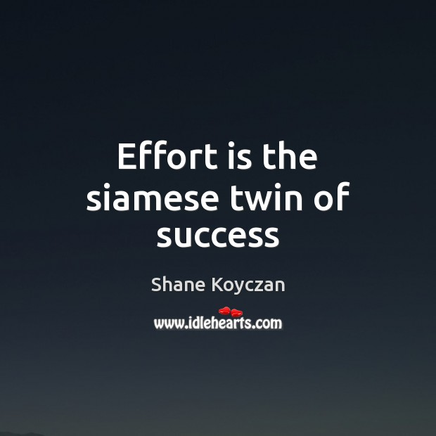 Effort is the siamese twin of success Image