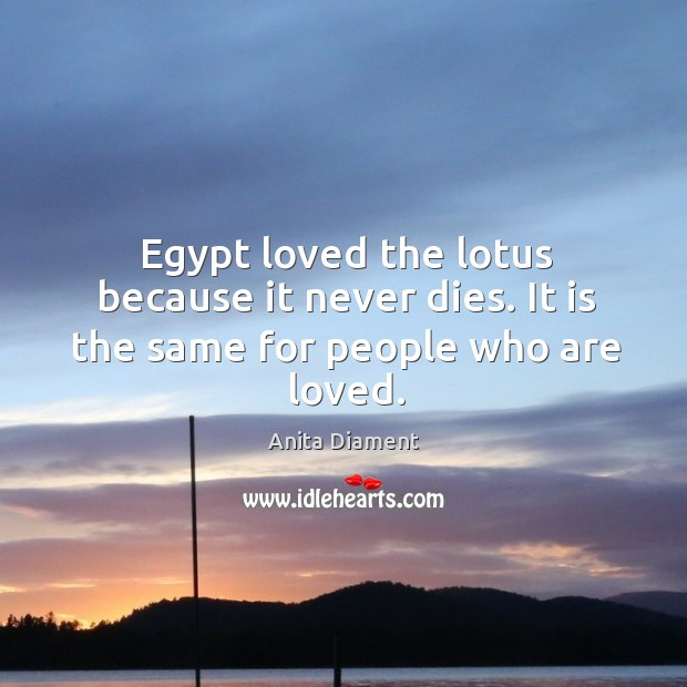 Egypt loved the lotus because it never dies. It is the same for people who are loved. Image