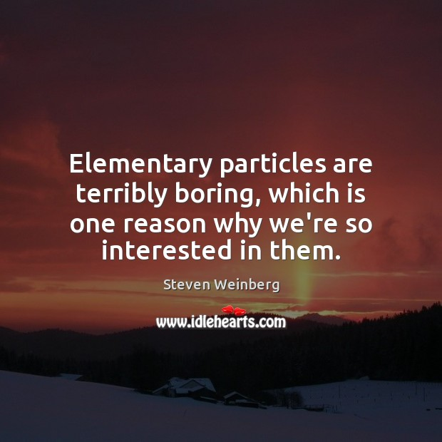Elementary particles are terribly boring, which is one reason why we're so Steven Weinberg Picture Quote