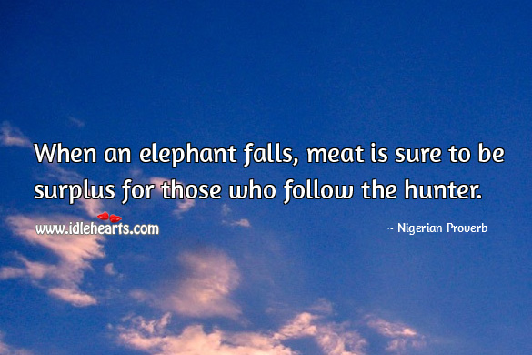 Image, When an elephant falls, meat is sure to be surplus for those who follow the hunter.