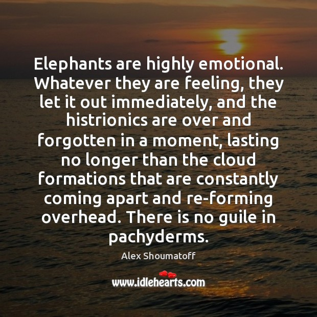 Image, Elephants are highly emotional. Whatever they are feeling, they let it out