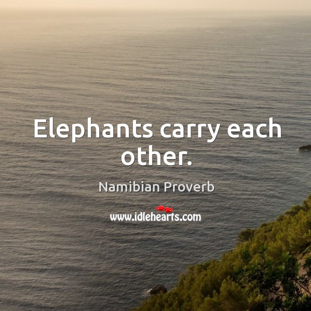 Elephants carry each other. Namibian Proverbs Image