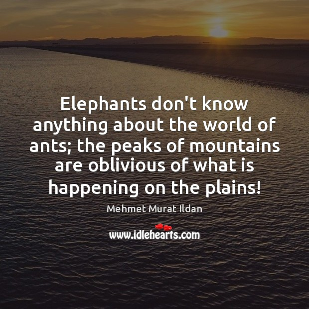 Image, Elephants don't know anything about the world of ants; the peaks of
