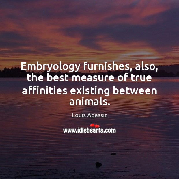 Image, Embryology furnishes, also, the best measure of true affinities existing between animals.