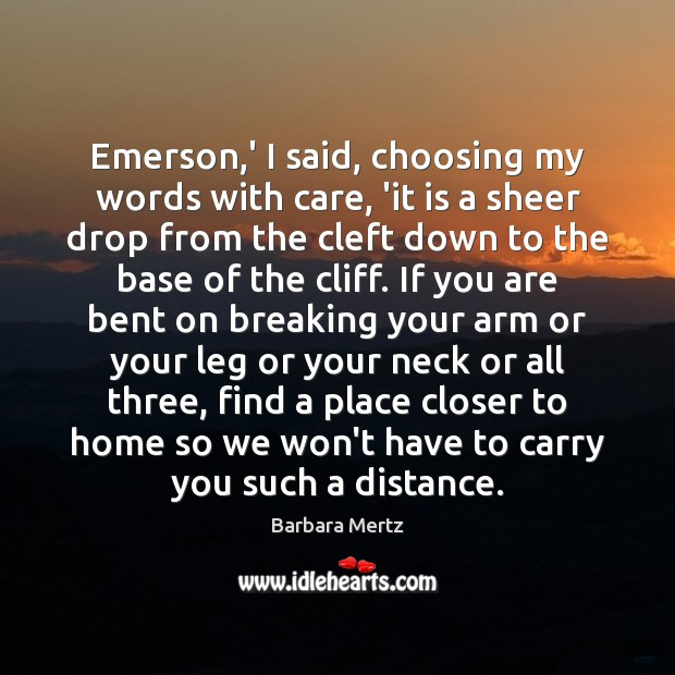 Image, Emerson,' I said, choosing my words with care, 'it is a