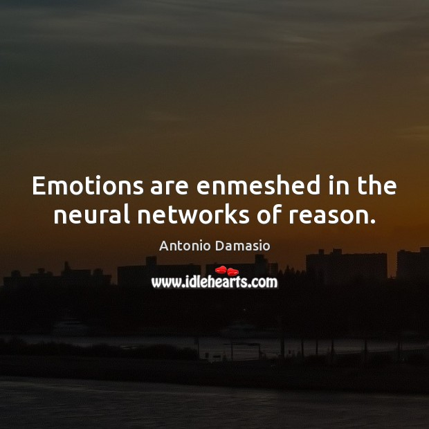 Emotions are enmeshed in the neural networks of reason. Image